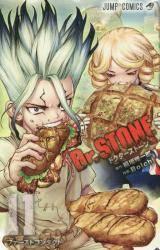 Dr.STONE 11巻 (11)