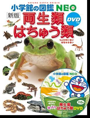 小学館の図鑑NEO 06 両生類・はちゅう類 新版