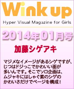 Wink up ウィンクアップ 2014/01
